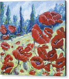 Dancing Poppies Acrylic Print by Richard T Pranke