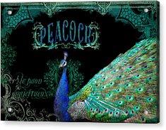 Elegant Peacock W Vintage Scrolls  Acrylic Print by Audrey Jeanne Roberts