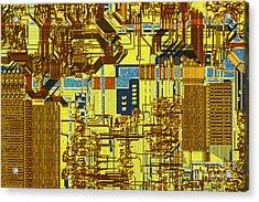 Microprocessor Acrylic Print by Michael W. Davidson