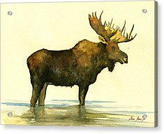 Moose Watercolor Painting. Acrylic Print by Juan  Bosco