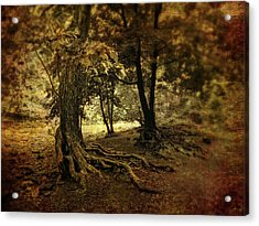 Rooted In Nature Acrylic Print by Jessica Jenney
