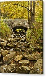 Stone Bridge 6063 Acrylic Print by Michael Peychich