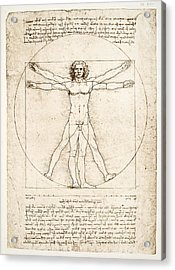 The Proportions Of The Human Figure Acrylic Print by Leonardo Da Vinci