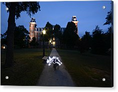 University Of Arkansas Acrylic Print by Chris  Look