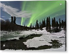 Aurora Borealis Over Creek, Yukon Acrylic Print by Jonathan Tucker