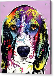 Beagle Acrylic Print by Dean Russo