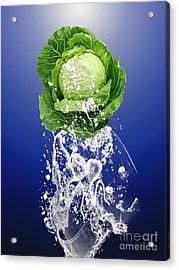 Cabbage Splash Acrylic Print by Marvin Blaine
