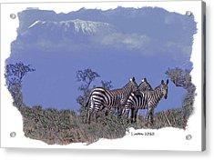 Kilimanjaro Acrylic Print by Larry Linton
