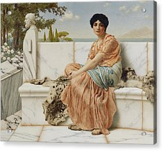 Reverie Acrylic Print by John William Godward