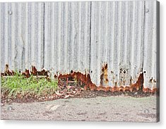 Rusty Metal Acrylic Print by Tom Gowanlock