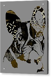 French Bulldog Collection Acrylic Print by Marvin Blaine