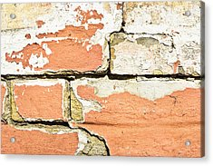 Brick Wall Acrylic Print by Tom Gowanlock