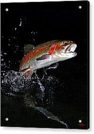 3d Rainbow Acrylic Print by Brian Pelkey