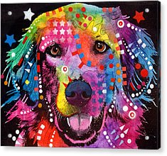 Golden Retriever Acrylic Print by Dean Russo
