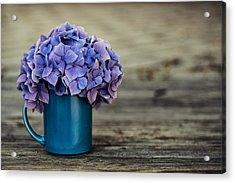 Hortensia Flowers Acrylic Print by Nailia Schwarz