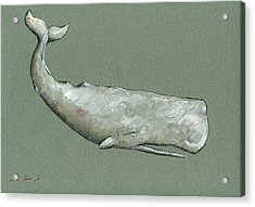 Moby Dick The White Sperm Whale  Acrylic Print by Juan  Bosco