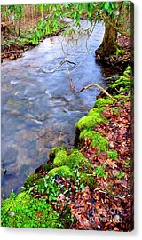 Middle Fork Of Williams River Acrylic Print by Thomas R Fletcher