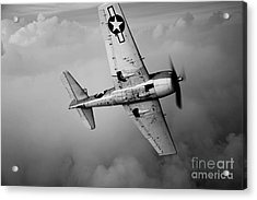 A Grumman F6f Hellcat Fighter Plane Acrylic Print by Scott Germain