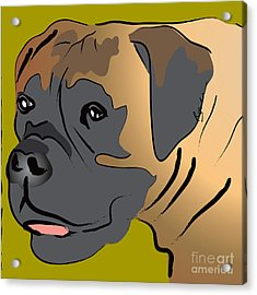 Boxer Dog Portrait Acrylic Print by Robyn Saunders