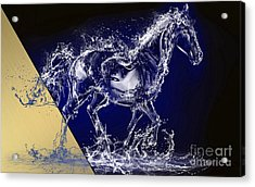 Horse Collection Acrylic Print by Marvin Blaine