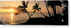 Silhouette Of Palm Trees At Dusk Acrylic Print by Panoramic Images