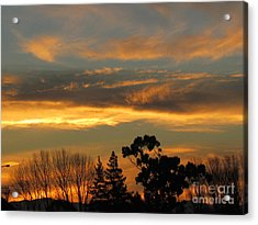 Sunrise Acrylic Print by Joyce Woodhouse