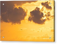 Sunset Acrylic Print by Angela Doelling AD DESIGN Photo and PhotoArt