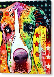 Great Dane Acrylic Print by Dean Russo