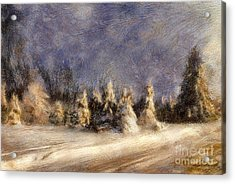 A Blizzard Of Light Acrylic Print by Lois Bryan