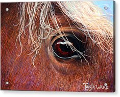 A Closer Look Acrylic Print by Tanja Ware