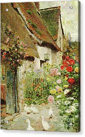 A Cottage Door Acrylic Print by David Woodlock
