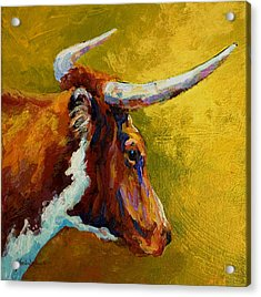 A Couple Of Pointers - Longhorn Steer Acrylic Print by Marion Rose