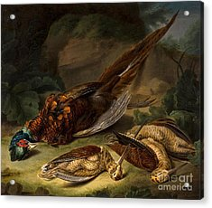 A Dead Pheasant Acrylic Print by MotionAge Designs