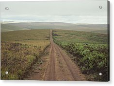 A Dirt Road Leading To The Horizon Acrylic Print by Bill Curtsinger