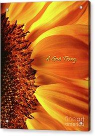 A God Thing-2 Acrylic Print by Shevon Johnson