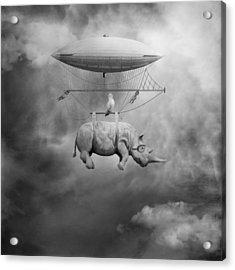 A Iv Acrylic Print by Beata Bieniak