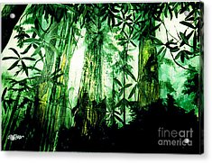 A Light In The Forest Acrylic Print by Seth Weaver