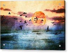 A Moment At Sea Acrylic Print by Debra and Dave Vanderlaan
