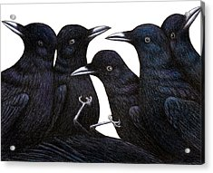 A Murder Of Crows Acrylic Print by Don McMahon