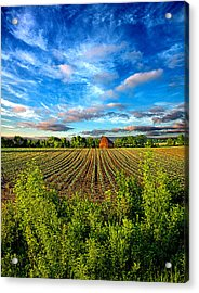 A Perfect Beginning Acrylic Print by Phil Koch