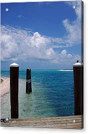 A Perfect Day Acrylic Print by Susanne Van Hulst