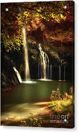 A Resting Place At Dripping Springs II Acrylic Print by Tamyra Ayles