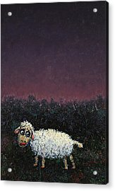 A Sheep In The Dark Acrylic Print by James W Johnson