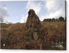 A Sniper Dressed In A Ghillie Suit Acrylic Print by Andrew Chittock