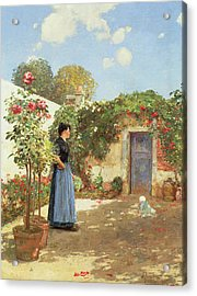 A Sunny Morning Acrylic Print by Childe Hassam