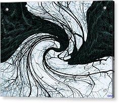 A Twist Of Oak Acrylic Print by Debra     Vatalaro