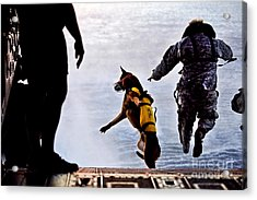 A U.s. Soldier And His Military Working Acrylic Print by Stocktrek Images