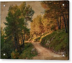 A Walk In Provence. Acrylic Print by Robert Brown
