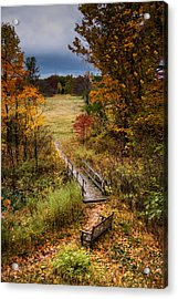A Walk In The Park I Acrylic Print by Tom Mc Nemar
