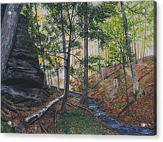 A Walk In The Woods Acrylic Print by Vicky Path